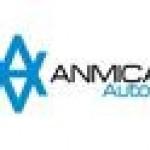 A & I Anmica Autos
