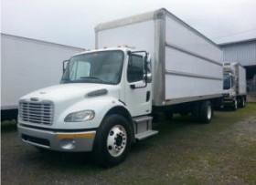 Company Truck -24′ Liquidacion