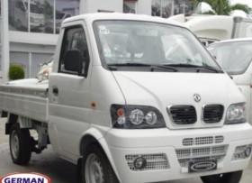 DFM Mini Truck 2012