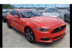 Deportivo Ford Mustang 50 2016
