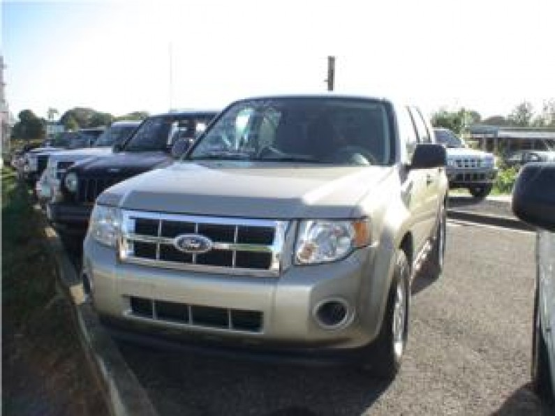 FORD ESCAPE 2011 NITIDA