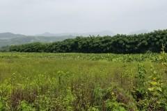 Finca en venta Rancho Arriba San José de Ocoa