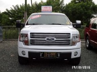 Ford F 150 Platinum 2009