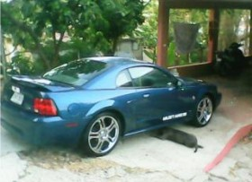 Ford Mustang 1999 3000