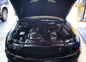 Ford Mustang Cobra 2009