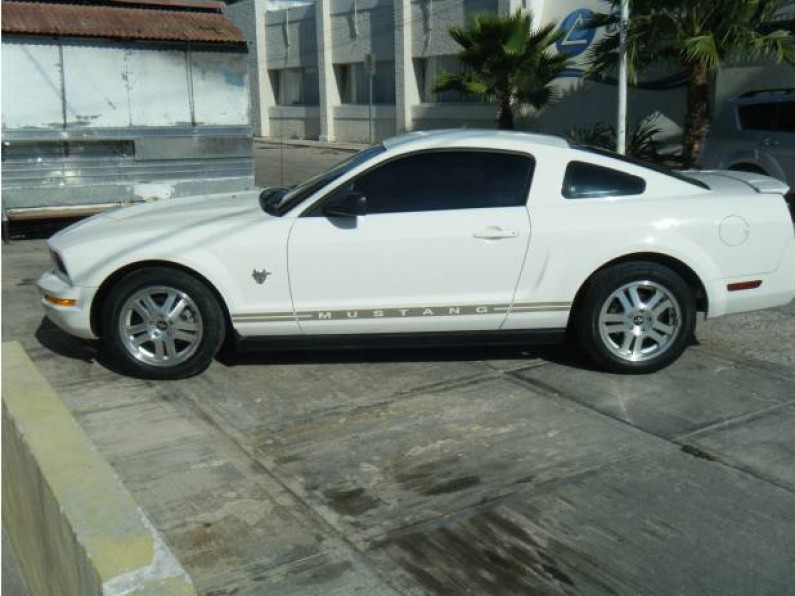 HERMOSO MUSTANG 2009