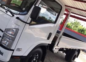 Isuzu Camion Cama Larga 2017