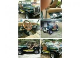 Jeep 1978 excelentes condiciones