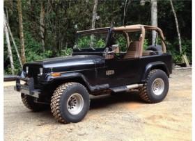 Jeep Renegado 8 cilindros original 1979