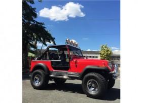 Jeep Wrangler 1987 V6 EXCELENTES CONDICIONES