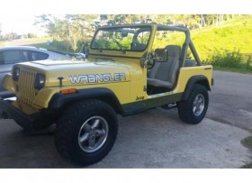 Jeep Wrangler 1990 amarillo 6cyl 42 motor