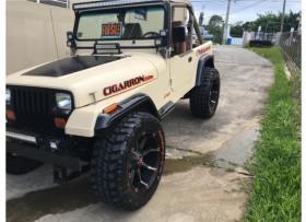 Jeep Wrangler 1990 con todo