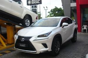 Lexus NX300 Hybrid 2019