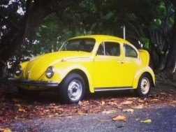 Volkswagen beetle cepillo 1978 Orig
