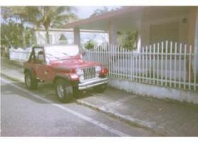 WRANGLER 1991