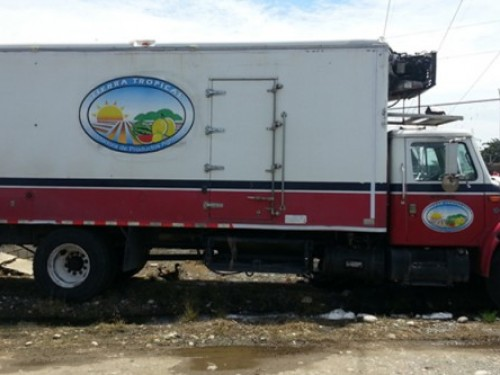 camión internacional, camión nevera